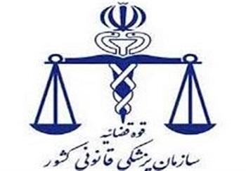 هویت ۴۵ نفر از جانباختگان سانحه هوایی پرواز تهران - یاسوج اعلام شد