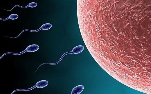 کاهش تولید اسپرم در مردان با چه علائمی پدید می آید؟