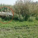 کشف جسد سوخته یک پسربچه در خرمشهر