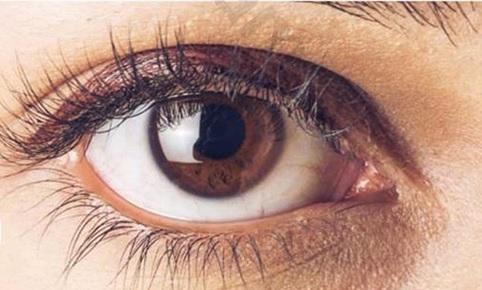 باوفاترین افراد این رنگ چشم را دارند