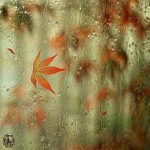 اس ام اس و جملات عاشقانه مخصوص روزهای بارانی سری (2)