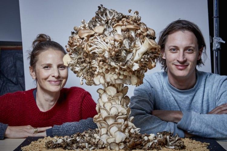 تصاویری دیدنی از ابرهای قارچی ساختهشده با قارچ