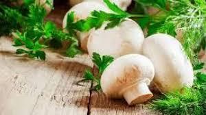 با خوردن قارچ جوان بمانید