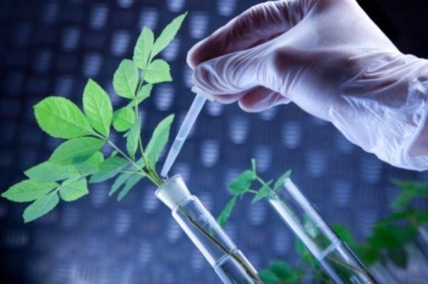 همافزایی منابع و امکانات کشور برای تولید ثروت از زیستفناوری
